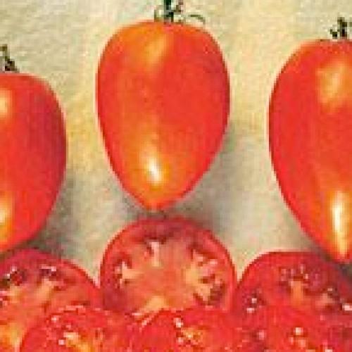 Tomato Seeds, Amish Paste Organic