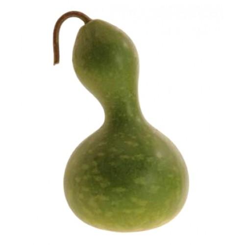 Gourd Seeds, Bottle or Birdhouse