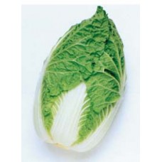 Chinese Cabbage Seeds, Kasumi F1 Hybrid