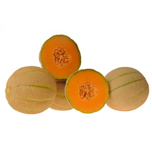 Melon Seeds, Maverick F1 Hybrid