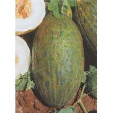 Melon Seeds, Pele de Sapo