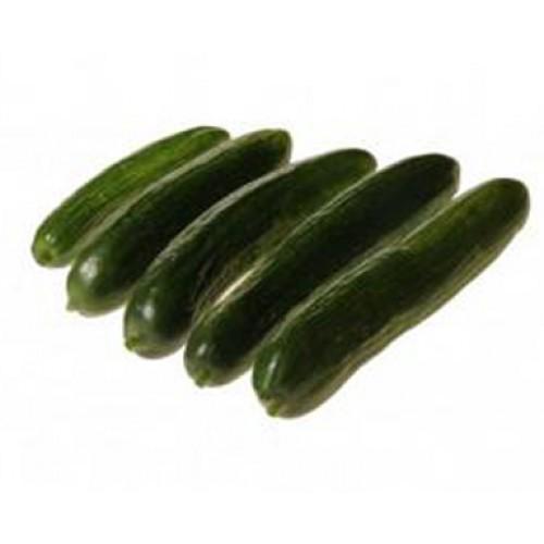 Cucumber Seeds, Mercury F1 Hybrid