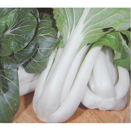 Pak Choi Seeds, White-Stemmed