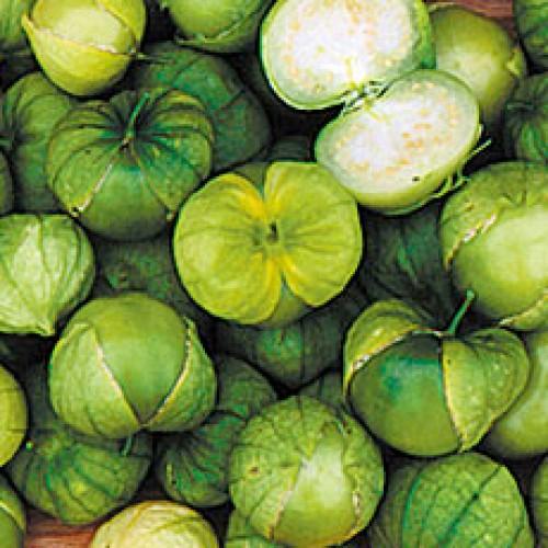 Tomatillo Seeds, Husk Tomato Grande Verde ORGANIC