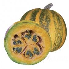 Pumpkin Seeds, Maximal F1 Hybrid (hulless seed)