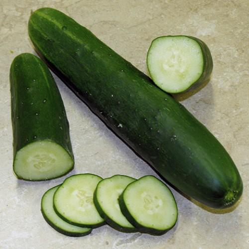 Cucumber Seeds, Sensation (Verde Ortolani)
