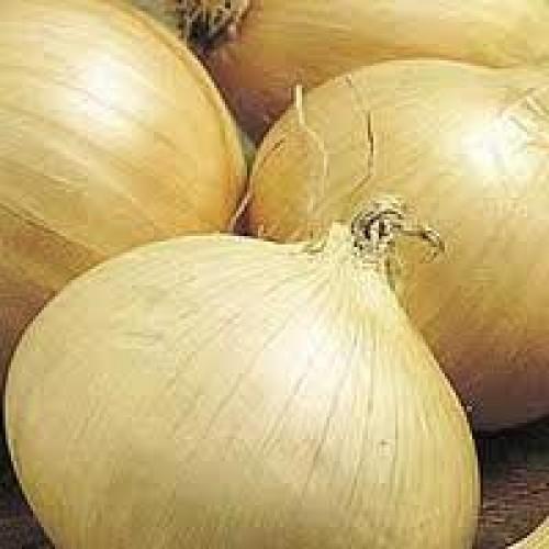 Onion Seeds, Walla Walla