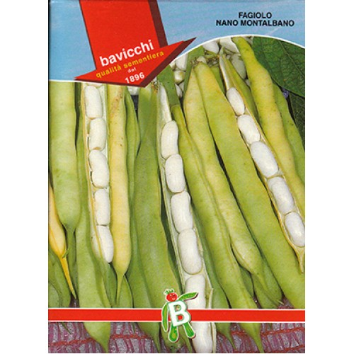 Bush Bean Seeds, Montalbano Cannellini