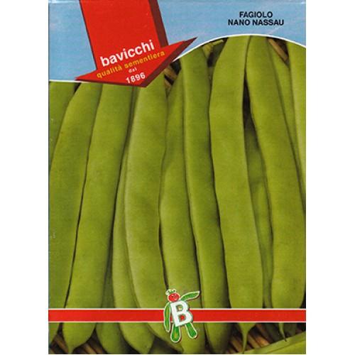 Bush Bean Seeds, Nassau (Romano)