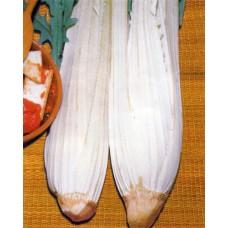 Cardoon Seeds, Pieno Inerme