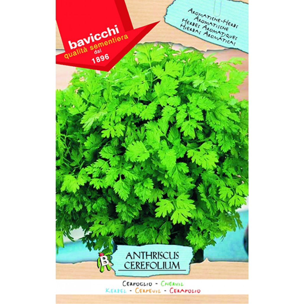 The Greatest Guide To Organic Chervil Seeds