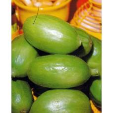 Cucumber Seeds, Carosello Barese