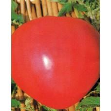Tomato Seeds, Oxheart (Cuor de Bue)