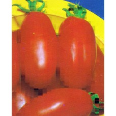 Tomato Seeds, San Marzano Bush