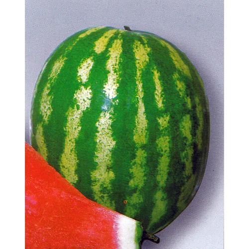 Watermelon Seeds, Crimson Sweet