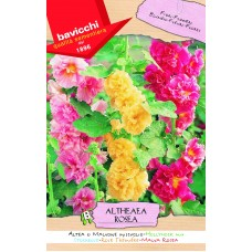 Hollyhock Seeds, Tall Doubles Mix