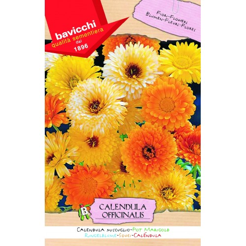 Calendula Seed, English (pot) Marigold