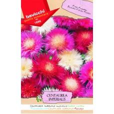Cornflower Seed, Imperial Mix Sweet Sultan