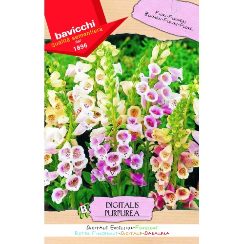 Foxglove Seeds, Excelsior Mix