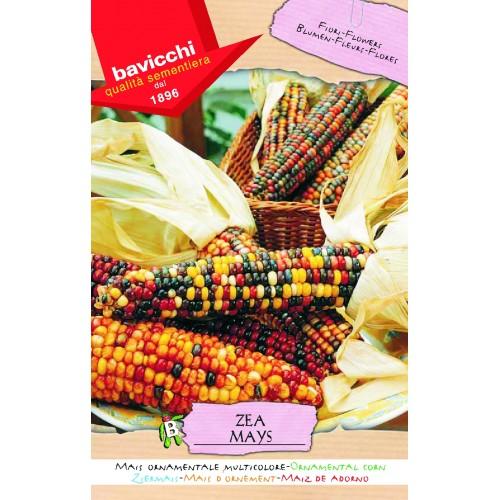 Corn Seeds, Multicolored Ornamental