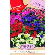Petunia Seeds Pendula Balcony Mix