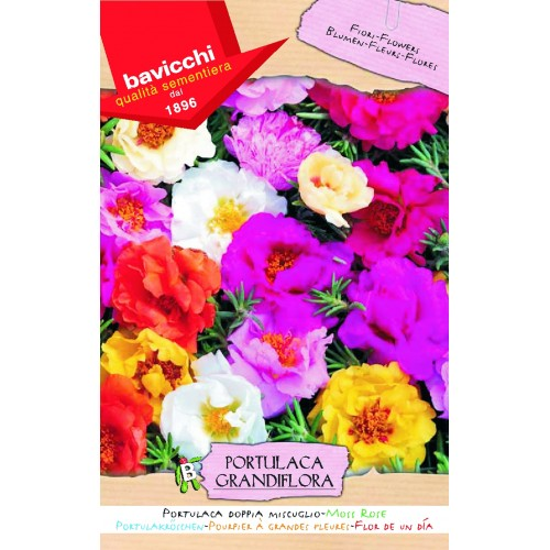 Portulaca Seeds, Sun Plant Doubles Mix