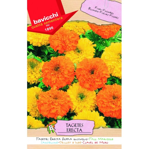 Marigold Seeds, Tall Doubles