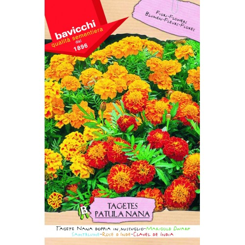 Marigold Seeds, Dwarf Rose of India Doubles Mix