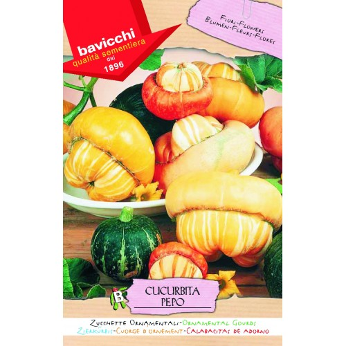 Gourd Seeds, Large Ornamentals Mix