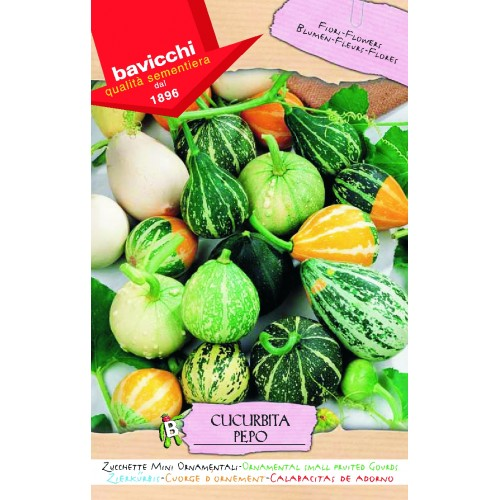 Gourd Seeds, Small Ornamentals Mix