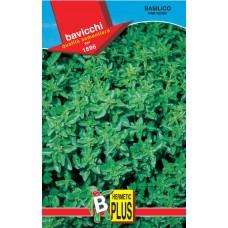Basil Seeds, Fine Verde