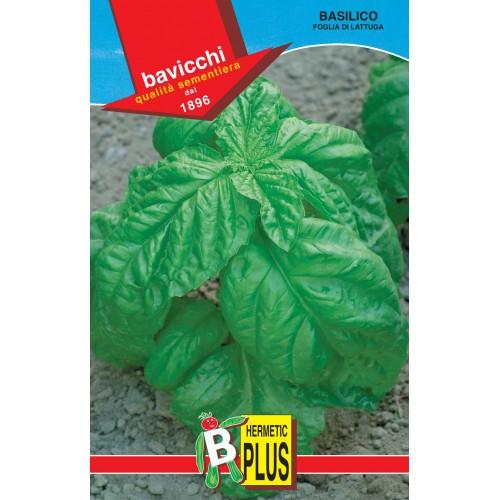 Basil Seeds, Lettuce Leaf