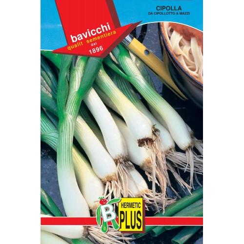 Bunching Onion Seeds, Green
