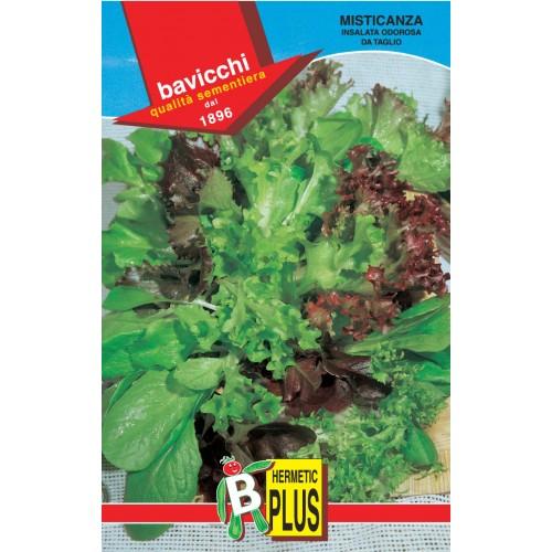 Salad Seeds Mix, Insalata Odorosa