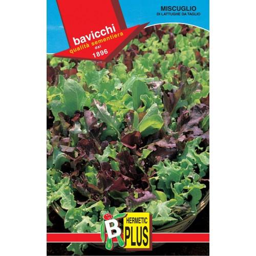 Lettuce Seeds, Italian Leaf Mix