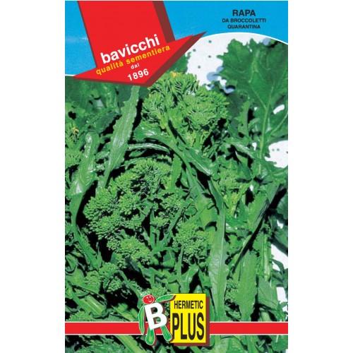 Rapini - Broccoli Raab Seeds, Quarantina