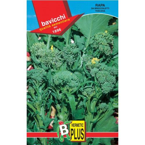 Rapini - Broccoli Raab Seeds, Toscana