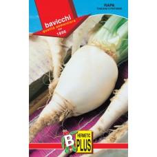 Turnip Seeds, Pistoiese