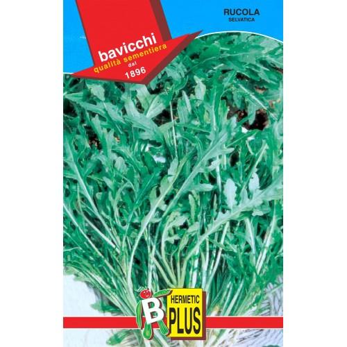 Arugula Seeds, Wild
