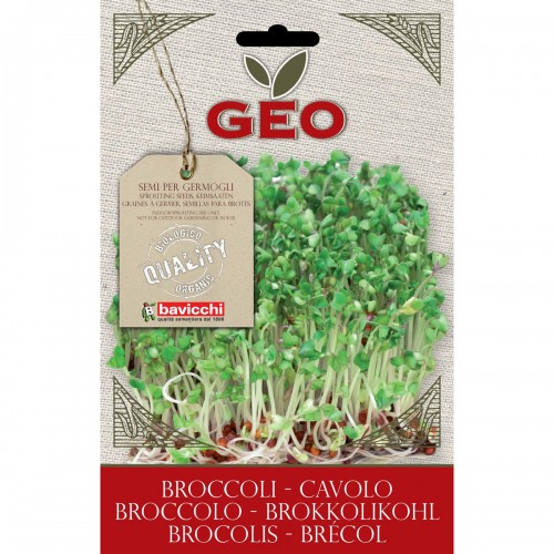 Broccoli Organic Seed For Sprouts 13 gram Packet