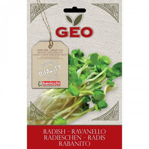 Radish Organic Seed For Sprouts
