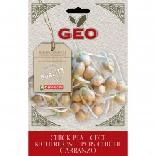 Chick Pea Organic Seed for Sprouts 90 gram Packet