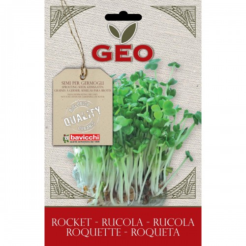 Arugula Organic Seed For Sprouts 30 gram Packet