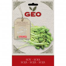 Soy Organic Seed For Sprouts 90 gram Packet