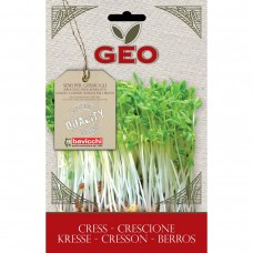 Cress Organic Seed for Sprouts 35 gram Packet