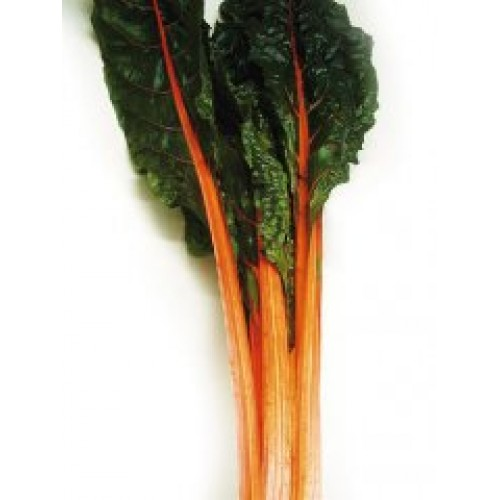 Swiss Chard Seeds, Orange Fantasia