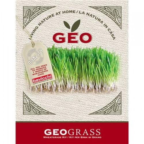 Barleygrass Sprouting kit