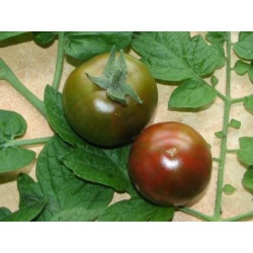 Tomato Seeds, Black Zebra Cherry