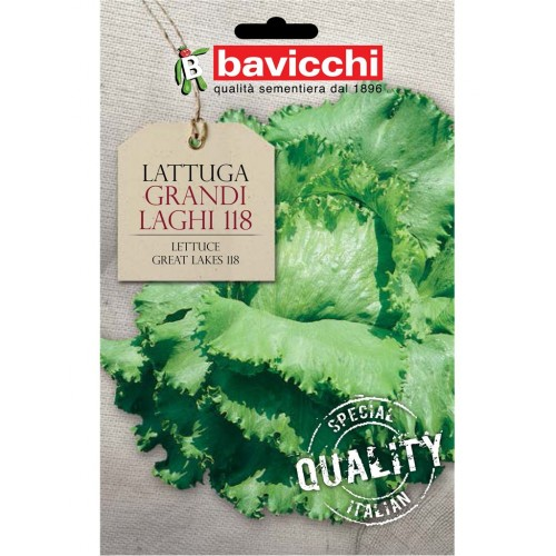 Lettuce Seeds, Great Lakes 118