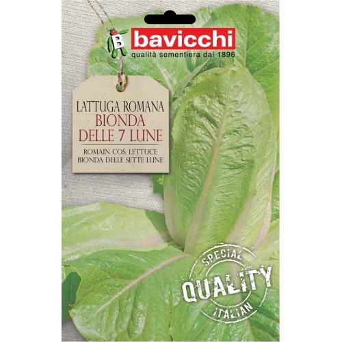 Romaine Lettuce Seeds, Bionda Della Luna